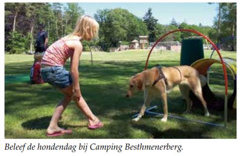 Beleef de hondendag bij Camping Besthmenerberg.
