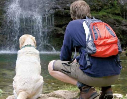 Hond aan het water met baas