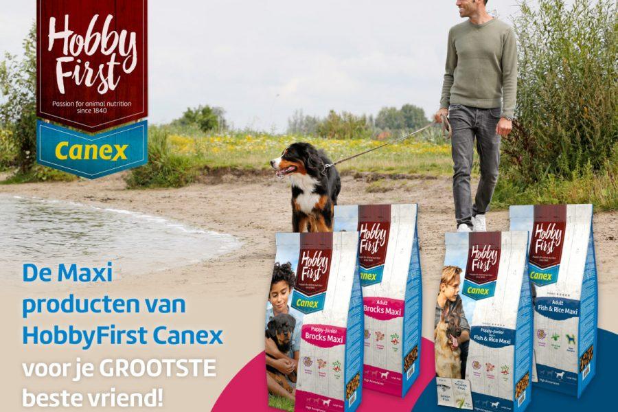 18139-HFC_FB-Maxi_dec_Onze-Hond_02