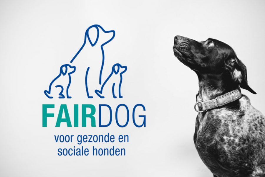 fairdog_web