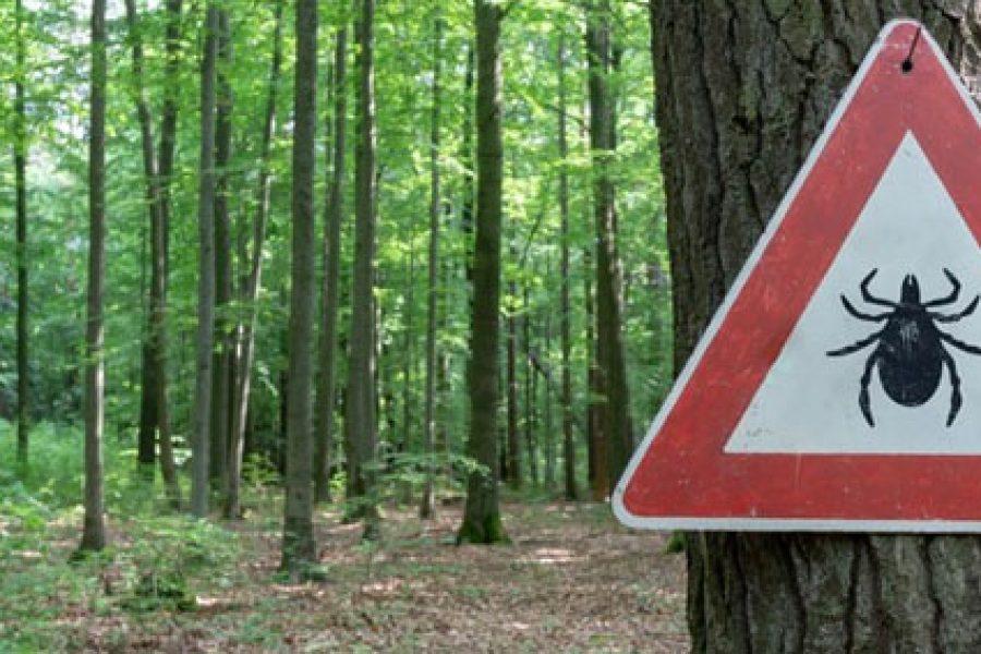 Bord gevaar voor teken